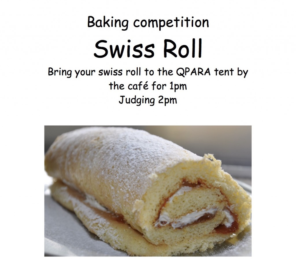 Queen's Park Day Swiss Roll